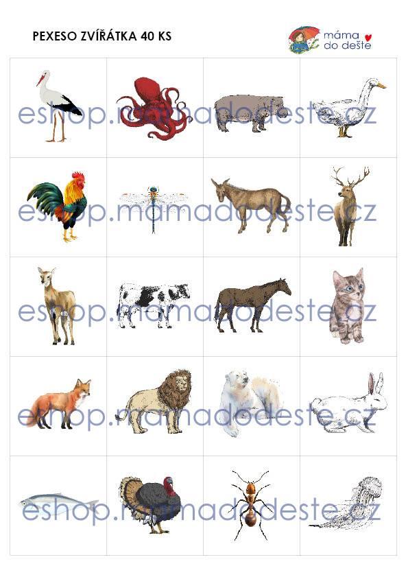 PDF pro děti k vytisknutí Pexeso zvířátka