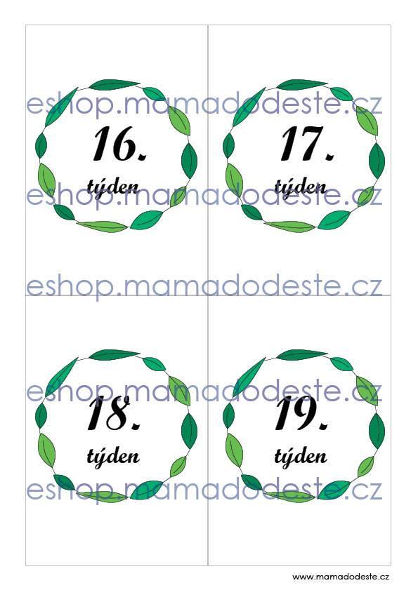 Milníkové kartičky těhotenské zelene listy
